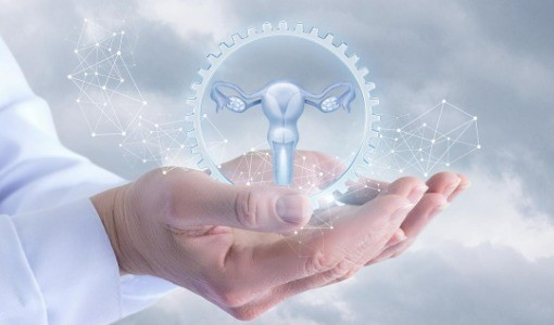 西洋医学の不妊治療